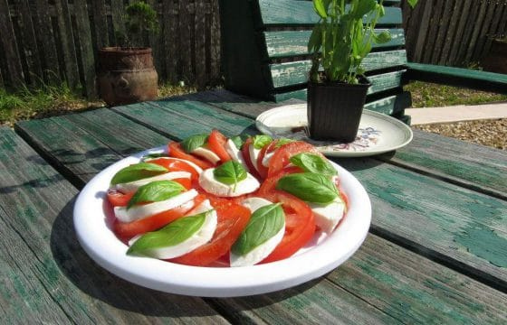 橄榄油浸番茄